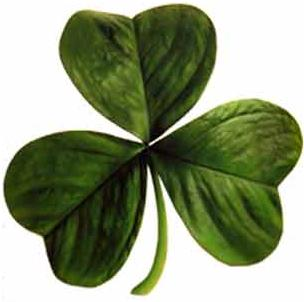 St. Patrick's Day Special - Corned Beef & Cabbage Week!