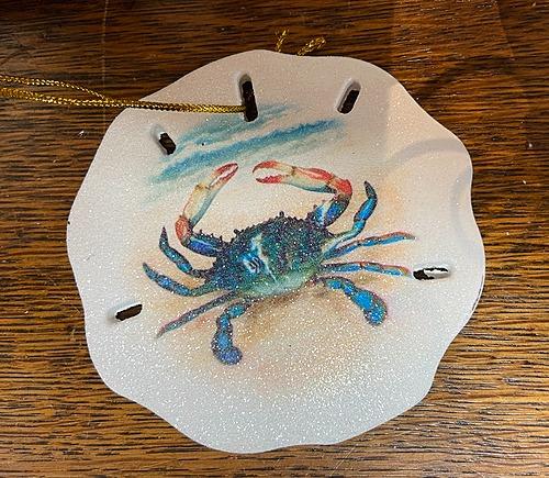 Crab Sand dollar