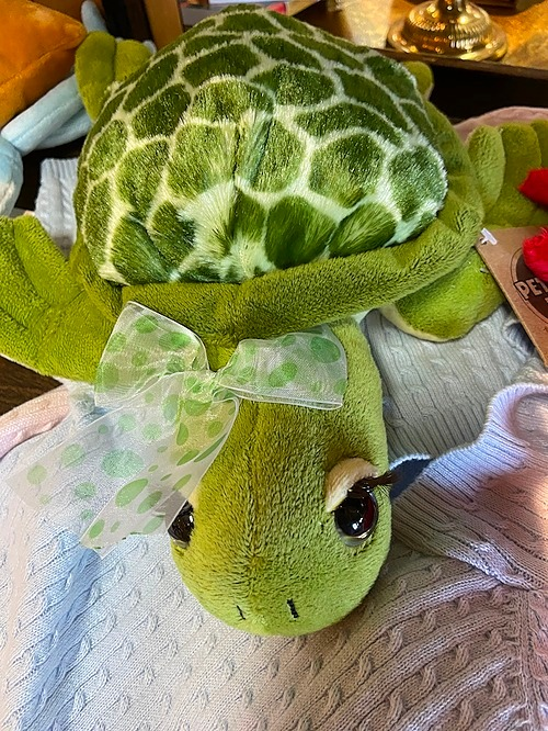 Stuffed Animal Turtle